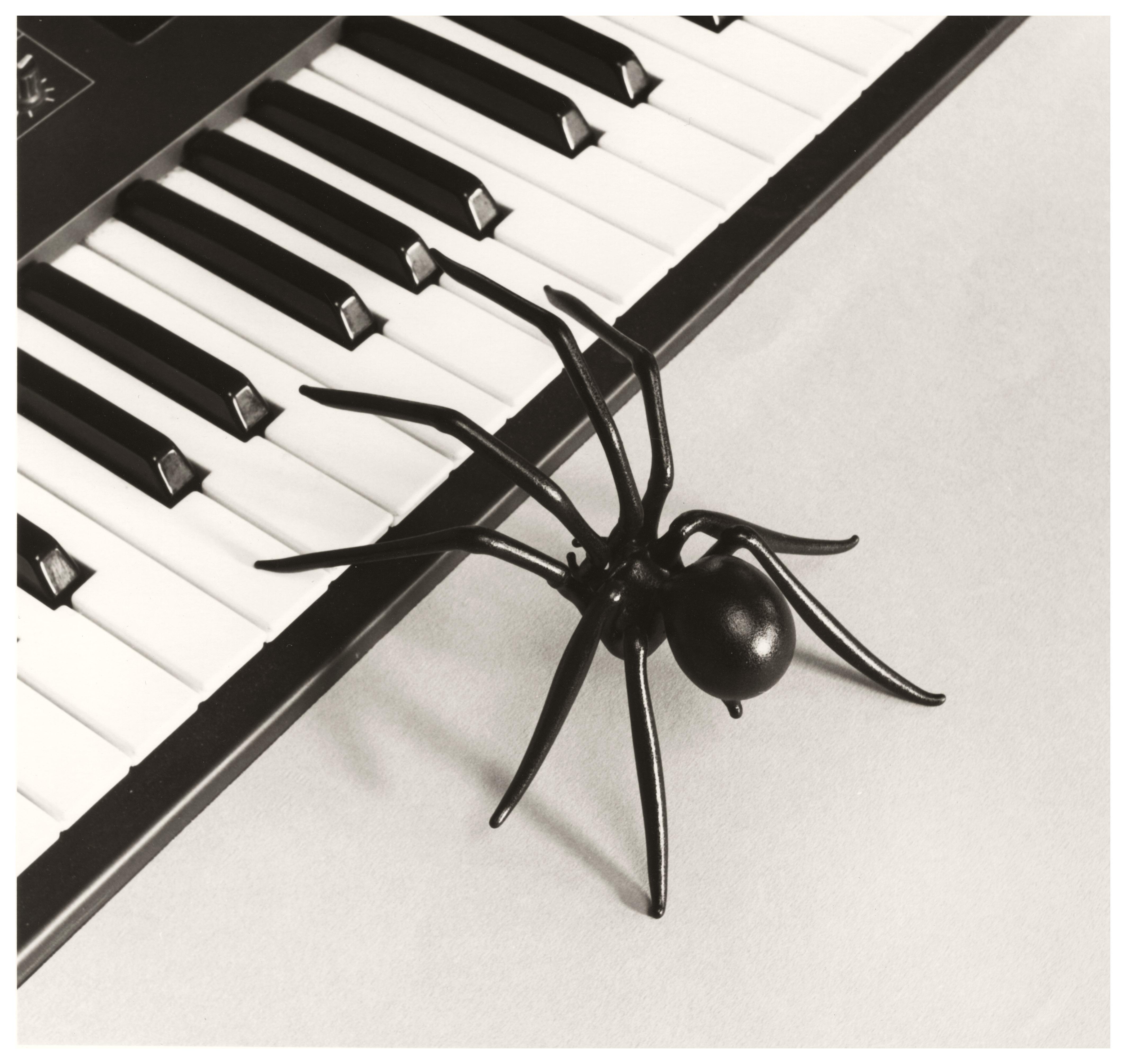 Untitled (Araña-Piano)