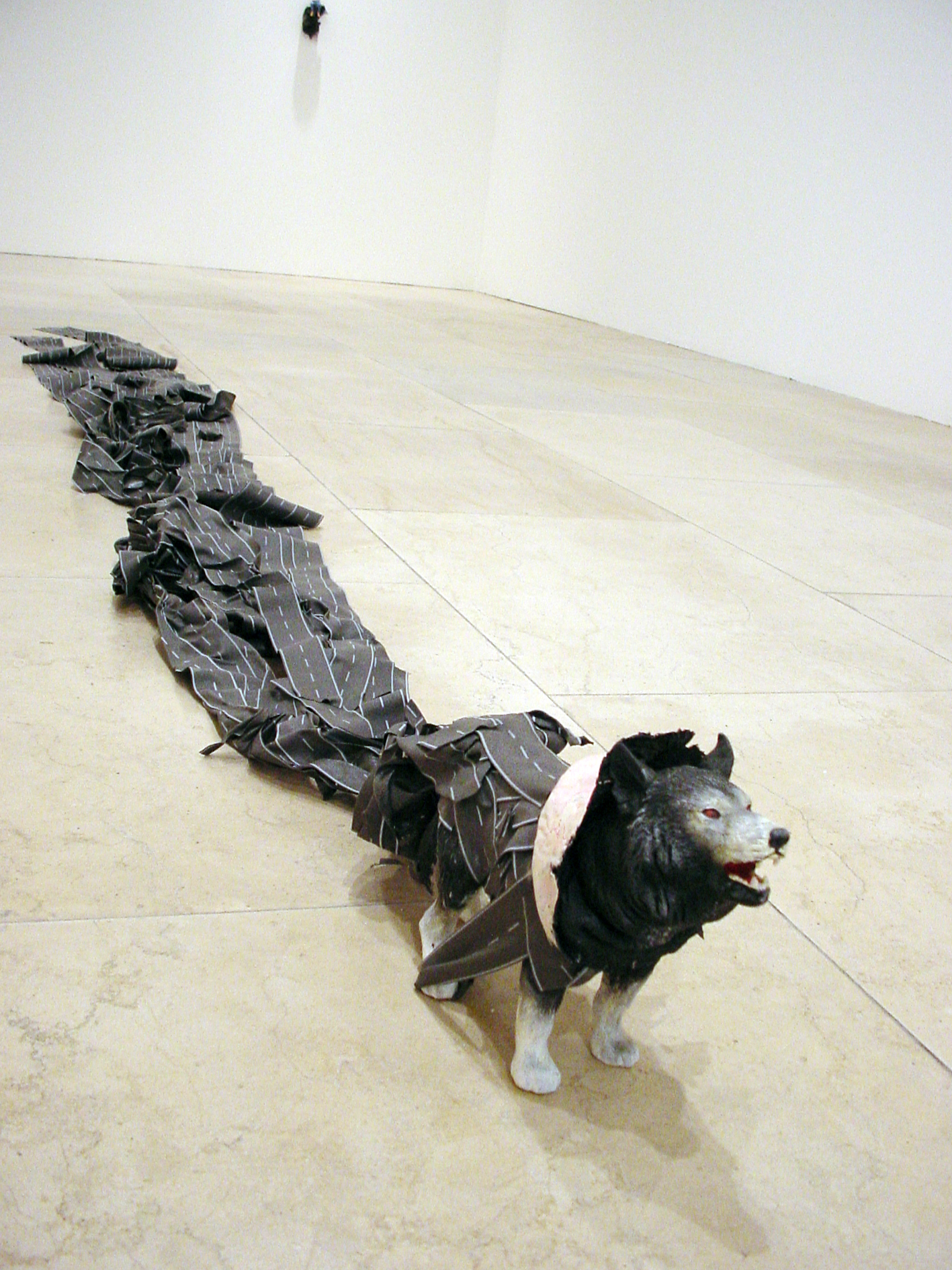 Lobo Iberico 3