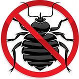Огромный спектр услуг по уничтожению вредителей в Томске, наша компания на рынке уже более 15 лет! За данное время мы сталкивались с различной сложностью работ по уничтожению клопов, тараканов, блох, пылевых клещей, мышей, крыс, полевок. Обрабатываем квартиры от посторонних запахов (старины, трупаи т.д), обрабатываем территории от клещей и грызунов (крыс, кротов, полевок и т.д.). Устранение клопов и различных насекомых производится в квартирах в течении 1-2 часов, гарантия на то что они больше не появится 1 год! Используем самые лучшие средства которые убивают паразитов но никак не вредят здоровью человека и домашних животных.