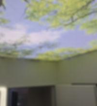 3D потолок 2.jpg