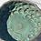 Thumbnail: Coupe Corail  en grès émaillé  CGLab