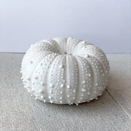 Salière Oursin en porcelaine  CGLab