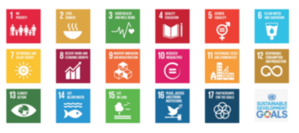 UN Sustainable Development Goals.png