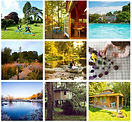 grid of pictures.JPG