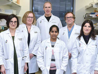Team Identifies Path to Blood Test for Artery Disorder