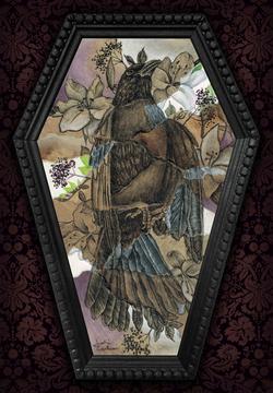 Corvus Mourning