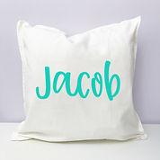 jacob cushion3.jpg