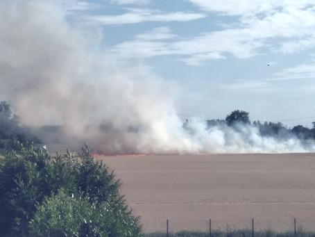 Großflächiger Brand auf einem Stoppelfeld beschäftigte die Wehr