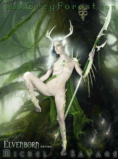 Faerylands the Elvenborn Fantasy art series by Michel Savage