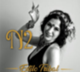 n2 avatarb.jpg