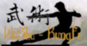 wushu banner.jpg
