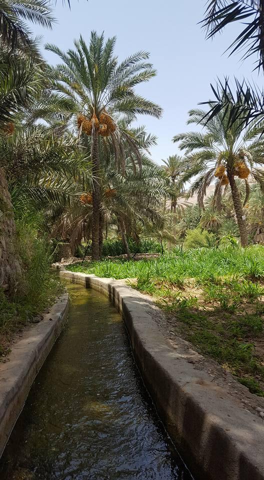 the falaj