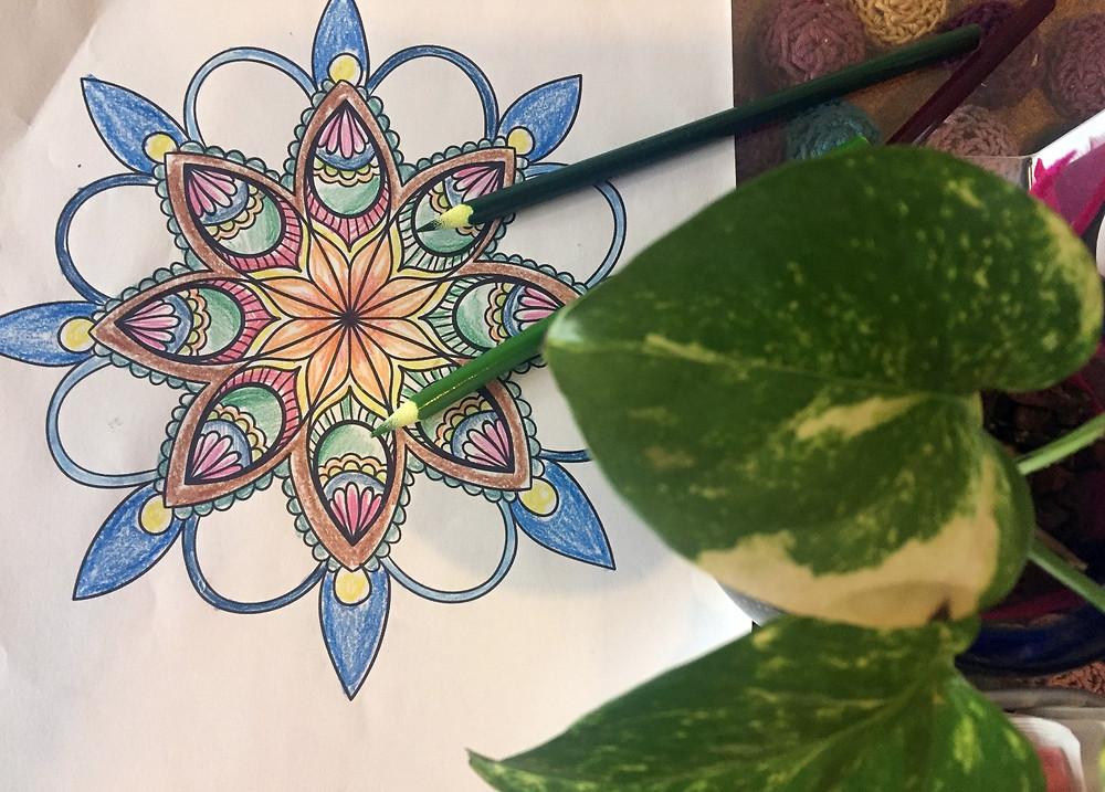 colorear mandalas en Divina Cocoa