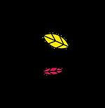 ecosmeticos