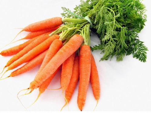 Aceite de Zanahoria 30mL
