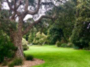 geelong gardens.jpg