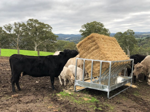 Cattle Square Bale Holder