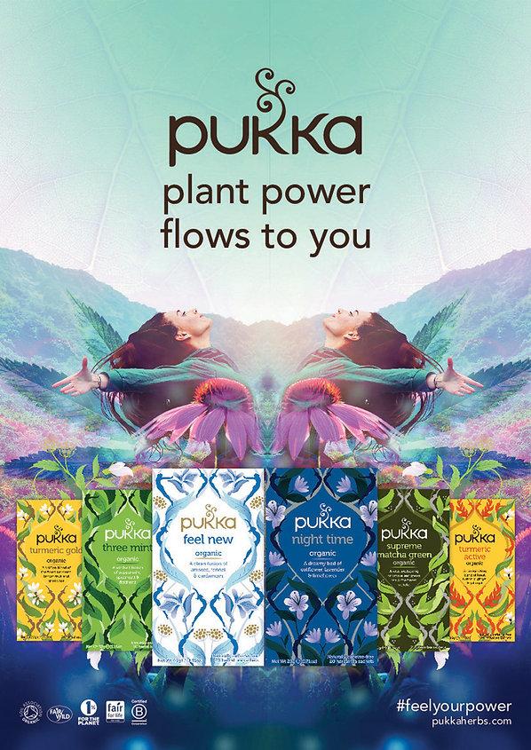 Pukka-Herbs-Plant-power-flows-through-yo