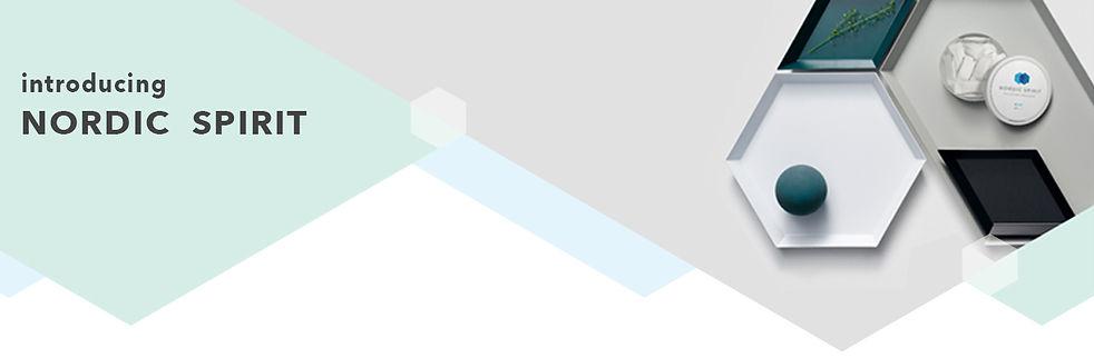 Nordic-Spirit-Banner.jpg