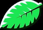 icon_leaf2.png
