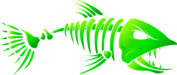 green fish png.png