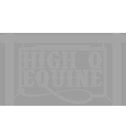 high q.png