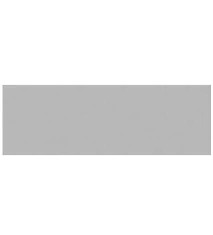 Logos Ambassador.png