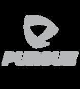 Logo Pursue.png