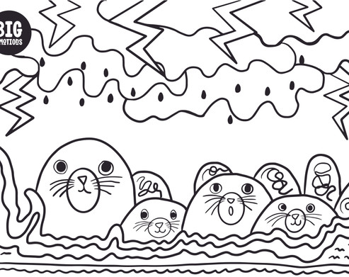 sealions big emotions mindful colouring