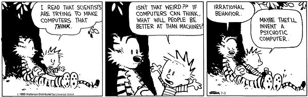 Calvin Irrational Behavior.jpg