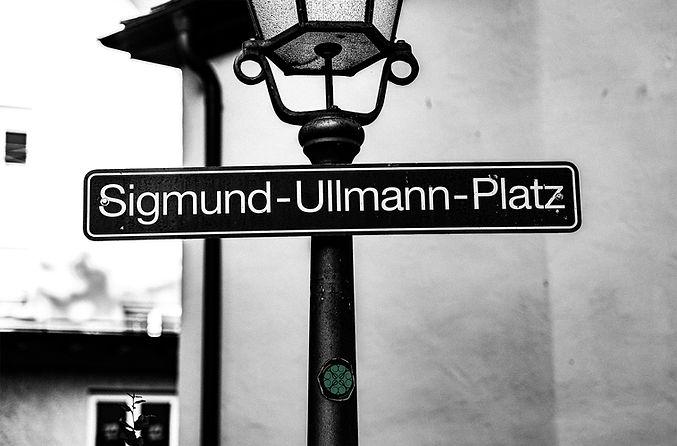Der_Salon_Sigmund_ullmann.jpg