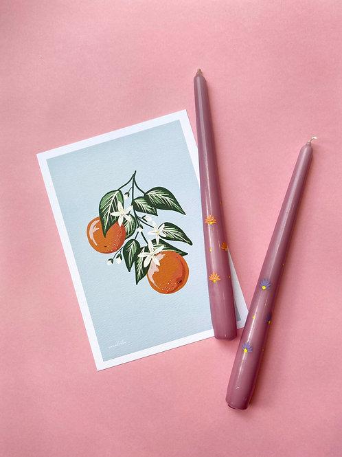 Orangecello print & candle gift set
