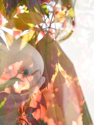_DSC8397_ny_mono.jpg