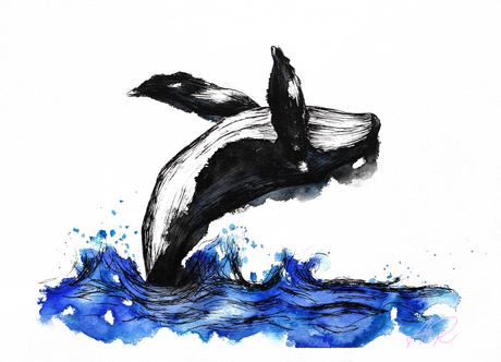 Whale Original