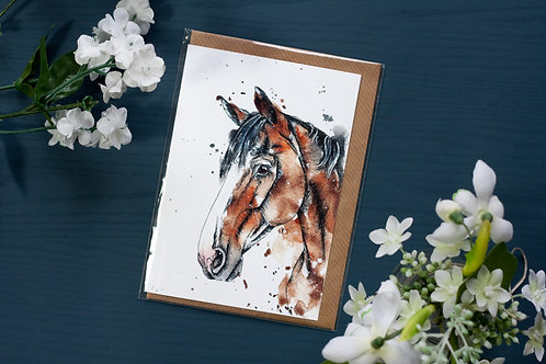 Bay Horse   Greetings Card
