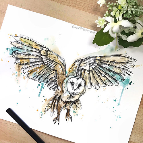 Barn Owl | A3  ORIGINAL