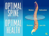 Optimal Spine