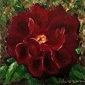 Saguache Rose Memory