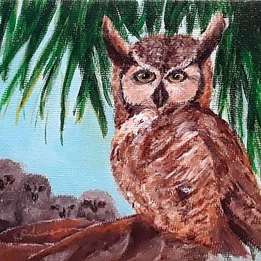 Clutch of Tiger Owls