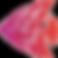 AquaristikTom_Logo单鱼.png