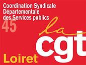 LOGO-CSD45.jpg