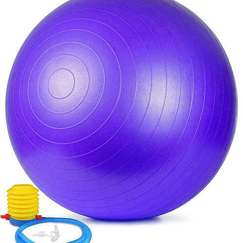 The Stability Ball (75cm)