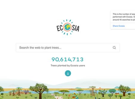 Is Ecosia Legit? An Honest Review.