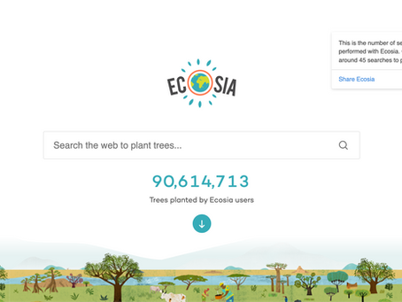 Is Ecosia Legit? An Honest Review.