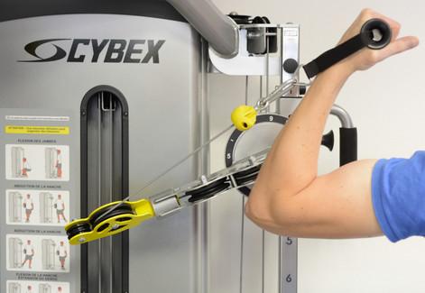 Cybex®