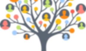 history-tree.jpg