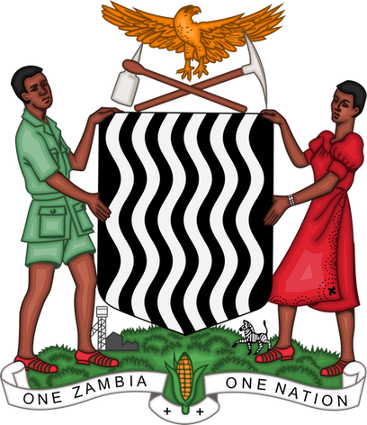Government through the Ministry of Youth, Sport and Child Development.svg.png