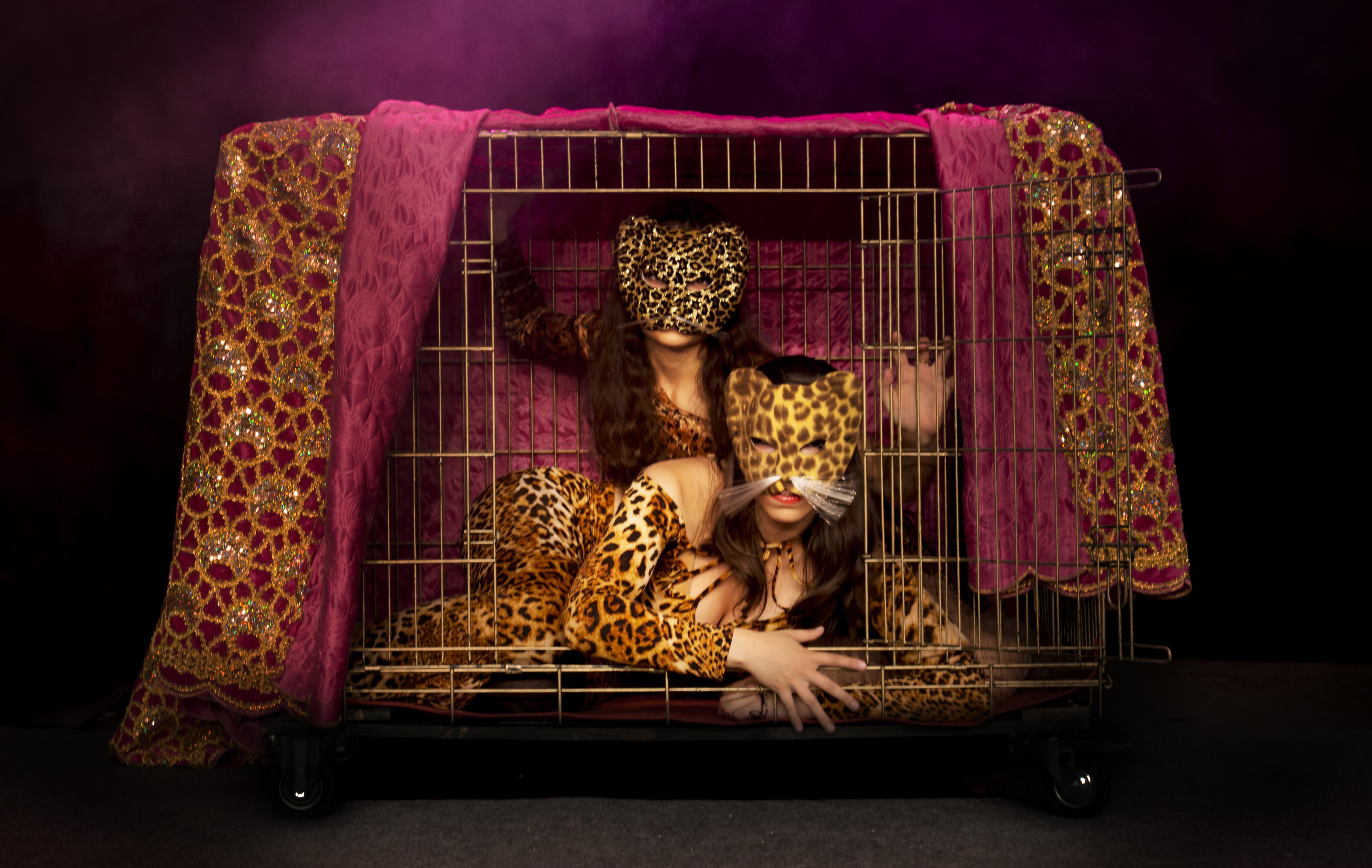les tigresses.jpg