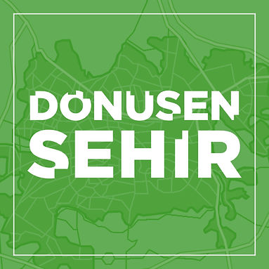 DNSN SHR 2.jpg