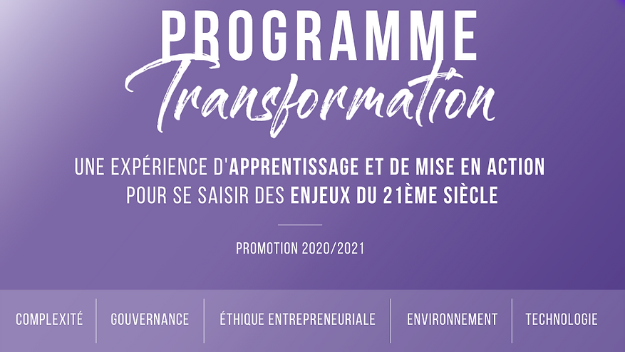 Programme Transformation-2.png